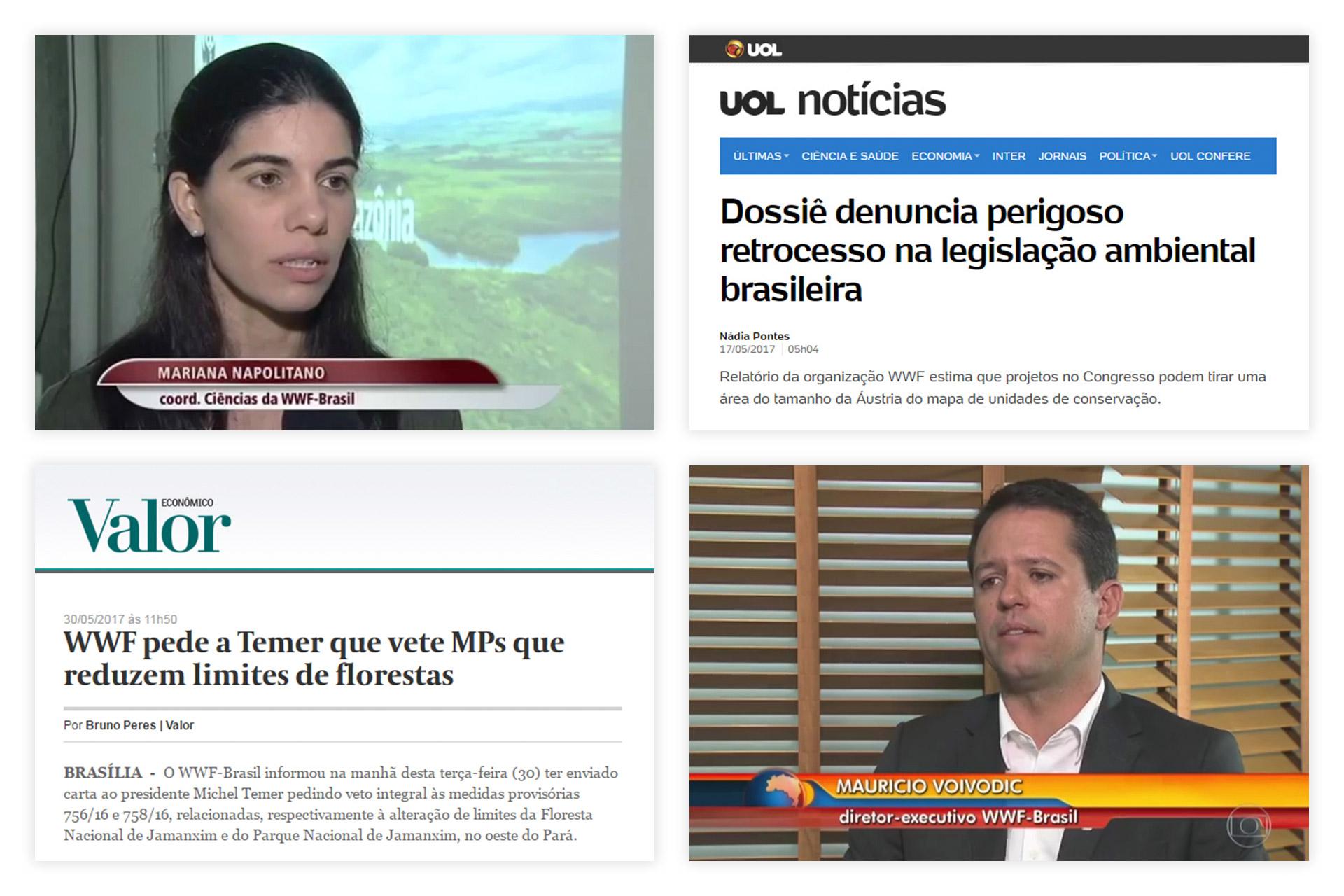 case-renca-wwf-brasil-03